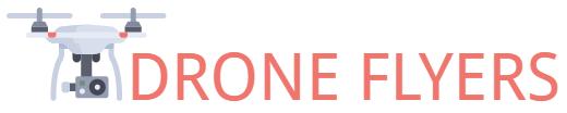 drone-flyers-2-logo