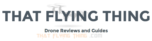 that-flying-thing-logo